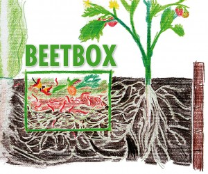 Beetbox-grafik